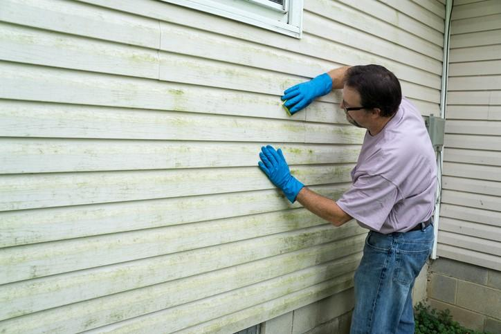 New or Renew: How a Repaint Specialist Can Repaint Your Vinyl Siding